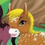 Princess' Ponies