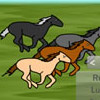 Horse Race Match Games