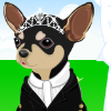 Jocuri Pet Wedding Dress Up