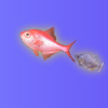 Jocuri Fish School