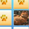 Jocuri Garfield Memo