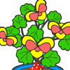 Colour the plant Hry
