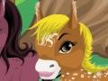 جنة الحصان بوني