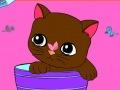 تلوين قطة على الإنترنت