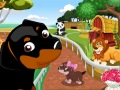 كلاب في حديقة الحيوانات