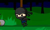 És um ninja que tem de tem de entregar uma encomenda ao seu Mestre, que vive numa aldeia próxima, na casa com uma lanterna amarela. Sê esperto e assegura que os inimigos não te apanham!