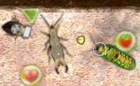 �s uma malvada faminta lagarta que saiu para comer o m�ximo de frutas poss�vel. Tens concorrentes, contudo: moscas, joaninhas, besouros e muitos outros insetos. Elimina-os a todos de modo a que possas comer a tua dose!