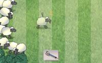 Neste jogo é testada a tua capacidade de reacção. Clica na tua setinha tranquilizante assim que uma ovelha passa a correr.