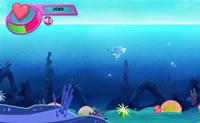 Deixa o pequeno golfinho nadar o mais depressa possível e ir o mais longe possível e tem atenção para que não seja apanhado!