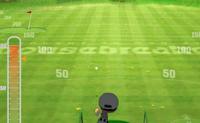 Defina a direcção e a força de lançamento e tente atingir o alvo com 10 bolas!