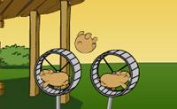Deixa o hamster voar o mais longe possível! Podes deixá-lo voar muito alto, mas também muito baixo, vê o mais longe que consegues ir. Tens cinco oportunidades, aproveita-as bem!
