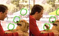Descobre as 5 diferenças em cada foto para ires para o próximo nível.