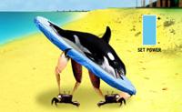 Tenta abater esta orca o mais próximo possível do bloco verde. É importante encontrar a velocidade e ângulo correctos.