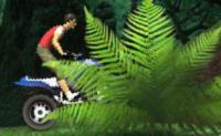 Conduz este poderoso todo-o-terreno através desta perigosa selva e tenta obter o máximo de pontuação.