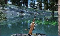 Um tranquilizante jogo no qual te encontra no local de pesca perfeito num lago e começas a pescar os mais coloridos peixes.