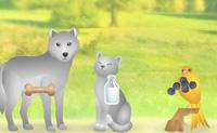 Neste jogo tens de dar a comida correcta ao animal correcto. Clica num grupo de comida para o trocares pela comida ao lado, até que a comida fique por cima do animal que a come. Por cada combinação certa ganhas 10 pontos. Por cada combinação errada, perdes energia.