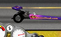 Goosehead Race