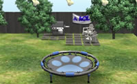 Trampolin Springen Hund