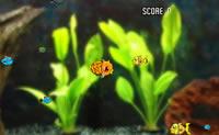 Pesce robot
