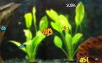 Peştele-robot