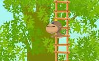 Regele-maimuţă