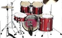 Beb� baterista