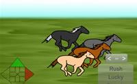 Paardenren Wedstrijd