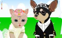 Vestir os animais para o casamento
