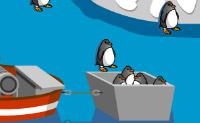 Łapanie Pingwinów