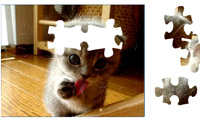 Puzzle del gatto 2