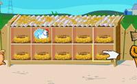 Farma Kurczaków