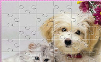 Puzzle canino