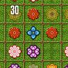 Jeux Fleurs