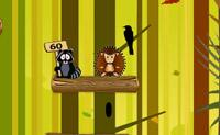 Hedgehog Jumping