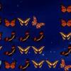 Jeux Papillons