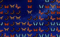 Mariposas
