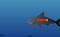 Tubarões e tesouros