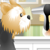 Pet-grooming Studio Games