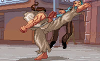 Karateka Loco