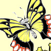 игры  Раскраска бабочка