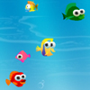 Hungry Fishy Games