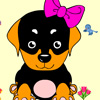 Colour the little dog