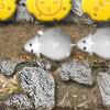 Jeux Chaîne de souris