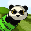 Rocket Panda Flying Cookie Quest Games