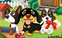 Honden in de tuin
