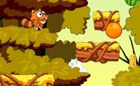 Springende wasbeer