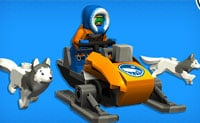 LEGO Friends Arctic