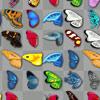 Jocuri Vlindervreugde