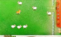 Coger ovejas