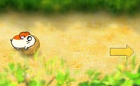 Hamsterrace 4